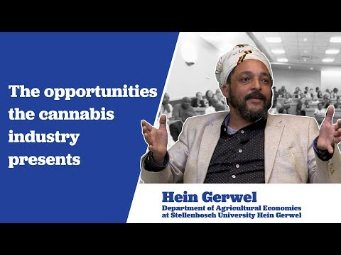Hein Gerwel on the Opportunities the Cannabis Industry Presents