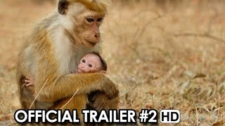 Nonton Monkey Kingdom Official Us Trailer  2  2015    Disney Nature Documentary Hd Film Subtitle Indonesia Streaming Movie Download