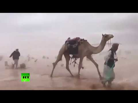Stormy Saudi desert as you've never seen it before