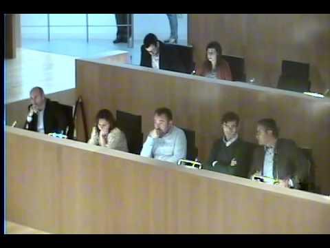 Pleno Ordinario de la Diputaci�n de M�laga 19 de octubre de 2015