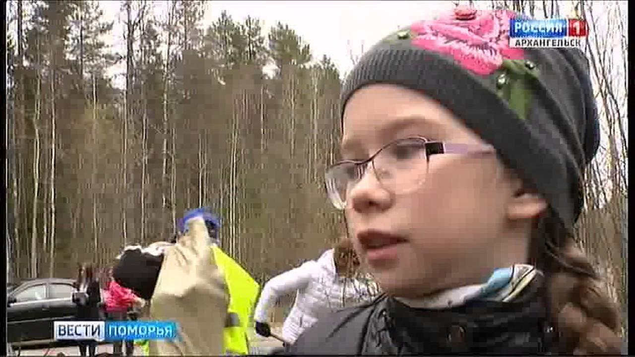 "В Приморском районе стартовала акция ""Лесу - да! Свалкам - нет!"""