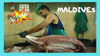 Download Video Cleaning a 50Kg tuna at the fish market in Malé, The Maldives MP3 3GP MP4