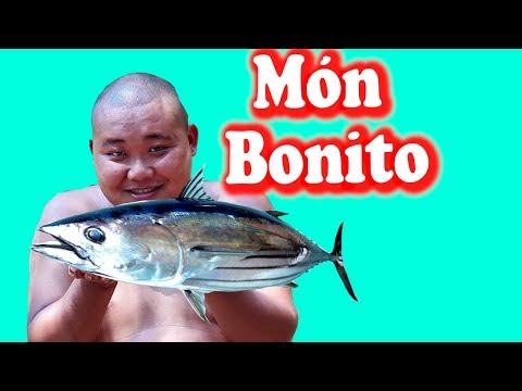 Ẩm Thực Món Ăn Nhật Cá Ngừ Bonito | Sơn Dược Vlogs #95 - Thời lượng: 17 phút.