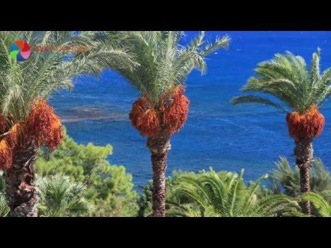 Rodos Princess Beach Hotel - Kiotari - Rodos - Grecja