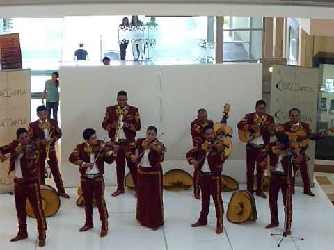 Express de los azahares Mariachi Nuevo Continental de Vallarta