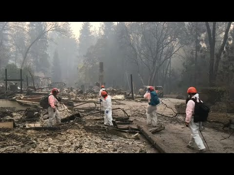 USA: Mehr als 600 Vermisste bei Waldbränden in Kalifo ...