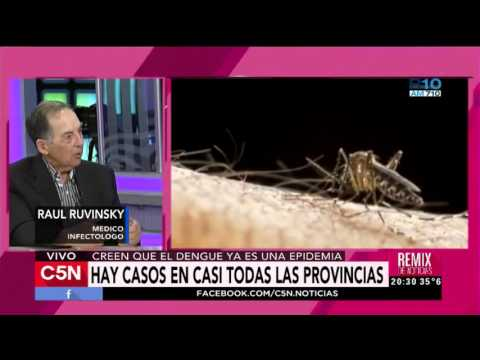 C5N - Salud: Confirman Casos De Dengue