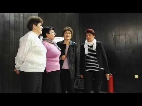 Ženska pjevačka grupa Udruženja Banijaca - Drina