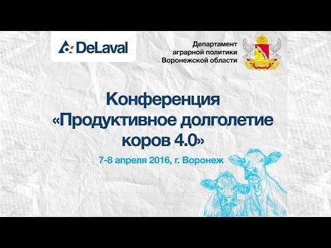 """""""Продуктивное долголетие коров 4.0"""". День 1"""