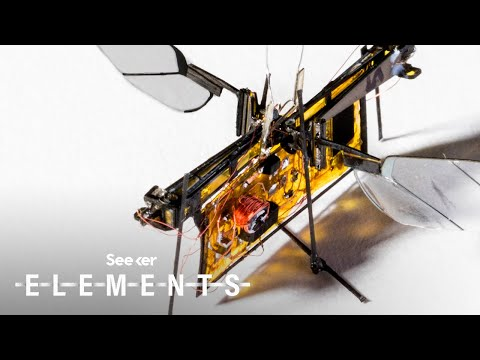Meet the Autonomous Insect Robots That Will One Day Swarm the Skies