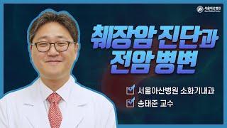 췌장암 진단과 전암병변 미리보기