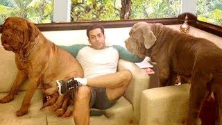 Video INSIDE Salman Khan's Panvel Farmhouse 2018 Unseen Video MP3, 3GP, MP4, WEBM, AVI, FLV April 2018