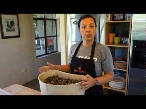 How to Cure Fresh Olives   Nero Del Gallo 2012 Harvest