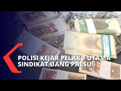 Sindikat Uang Mata Asing Palsu Ditangkap, Polisi Bentuk Tim Khusus Kejar Pelaku Utama!