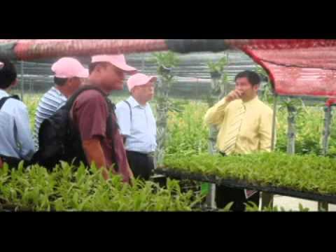 Thai Orchids Co.,Ltd. (PR ENGLISH Version)