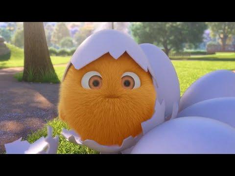 Sunny Bunnies | Chick-a-Bunny |  COMPILATION | Cartoons for Children (видео)