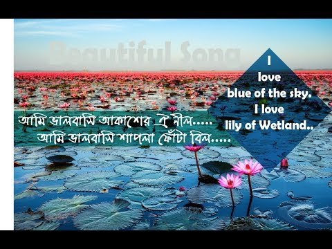 Beautiful Islamic song_(Bangla islamic song_Ami valobashi akasher oi nill.)