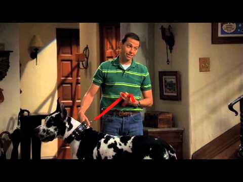 Two and a half men - Alan steals Chester
