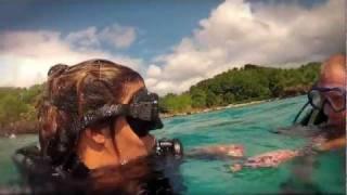 Guadeloupe Trotter - Jour 8 - Plongée dans la réserve Cousteau - YouTube