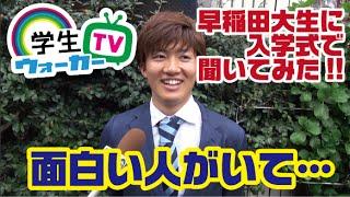 早稲田大学 入学式できいてみた!
