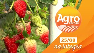 Agro Record na íntegra - 25/Agosto/2019 - Bloco 1