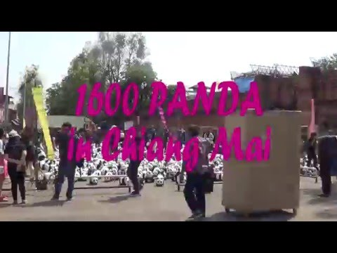 Time Lapse : 1600 Pandas+ World Tour @ Chiangmai