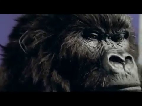 Cadbury Commercial for Cadbury Dairy Milk (2012) (Television Commercial)
