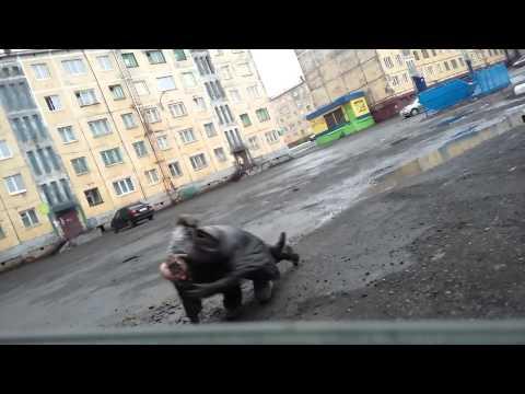 Норильск, драка двух мужиков