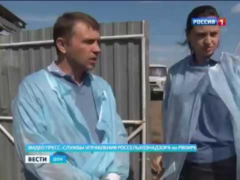 Россельхознадзор проверил работу молочной фермы в Ростовской области