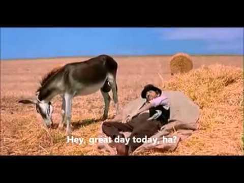 摸摸驴子下面袋袋就知道时间?