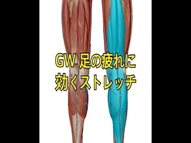 【ストレッチ】GW 足の疲れに効くストレッチ【福岡市 西区 腰痛 糸島市】