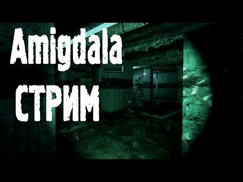 12.03.2017 ПОГОДИТЕ СТРИМ | Amigdala