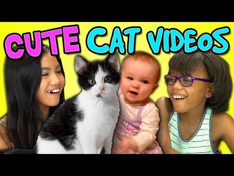 Kids React Bonus – Cute Cat Videos