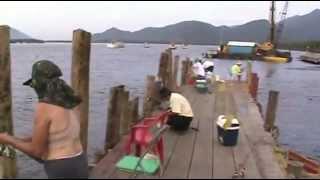 Pescaria No Píer Em Bertioga Tainha E Outros Peixes Família Reunida 2013