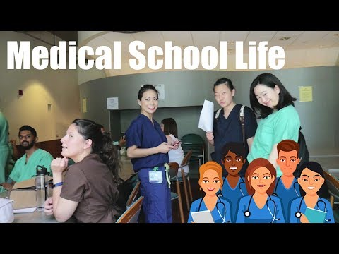 A Typical Day Of A Medical School Student