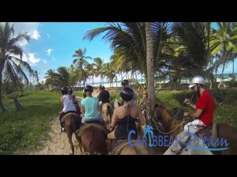 Horseback Riding on the Beach | Punta Cana Tours