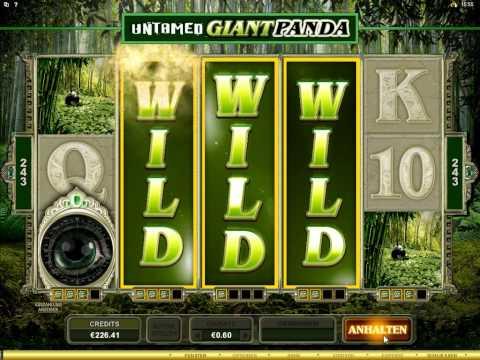 Untamed Giant Panda Slot - 2x Super Mega Win