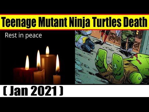 Teenage Mutant Ninja Turtles Death {Jan 2021} Obituary, Cause Of Death, Reason