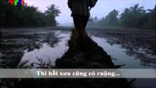Đoàn Tàu Kinh Tế Việt Nam Băng Qua Vùng Tối - Chương Trình VHKHXHGD - Ấn Tượng VTV
