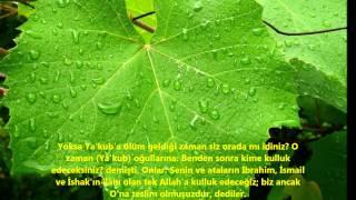 BAKARA-(BAKARA)-SURESİ-Ebubekir Şatiri (Abu Bakr Al Shatri)