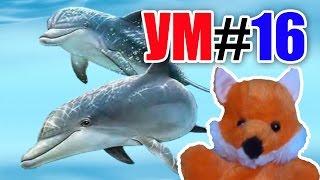 УМ #16 - Удивительный мир. Дельфины