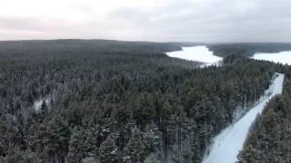 Калевальский парк с высоты птичьего полета