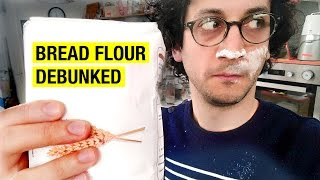 Which Flour for Baking Bread ? Sourdough Bread Series by Alex French Guy Cooking