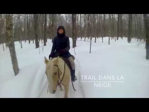 Mon ranch québécois en hiver