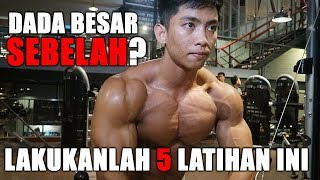 Video Reps-ID.com - 5 Latihan Bikin Otot Dada Seimbang MP3, 3GP, MP4, WEBM, AVI, FLV April 2019