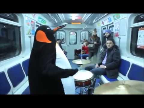 Penguin Subway Drum Solo