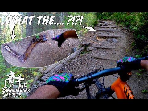 DID I TAKE A WRONG TURN?   Backcountry Mountain biking in beautiful Jackson Hole, WY