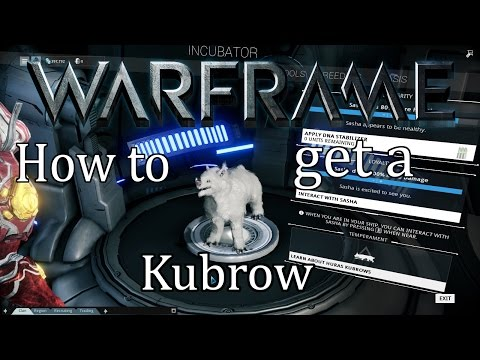 Warframe Tutorial – How to get a Kubrow