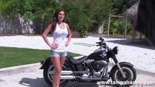 7. Harley Davidson Fatboy Lo for sale - Florida call Price Specs