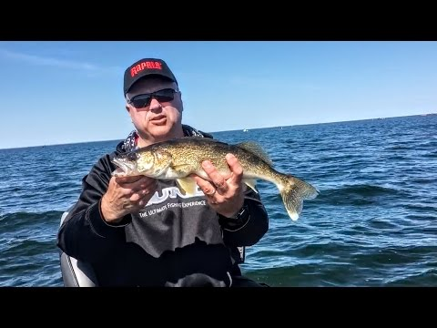 Mille lacs lake mn fishing report troy smutka for Mille lacs fishing